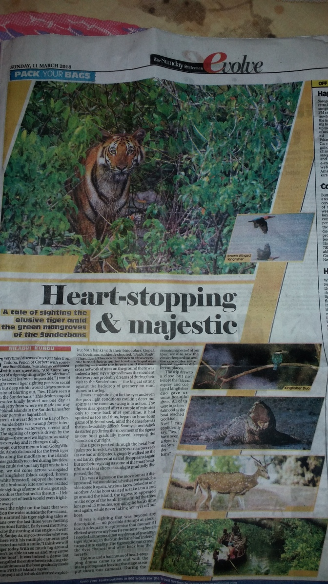Sunderban Article